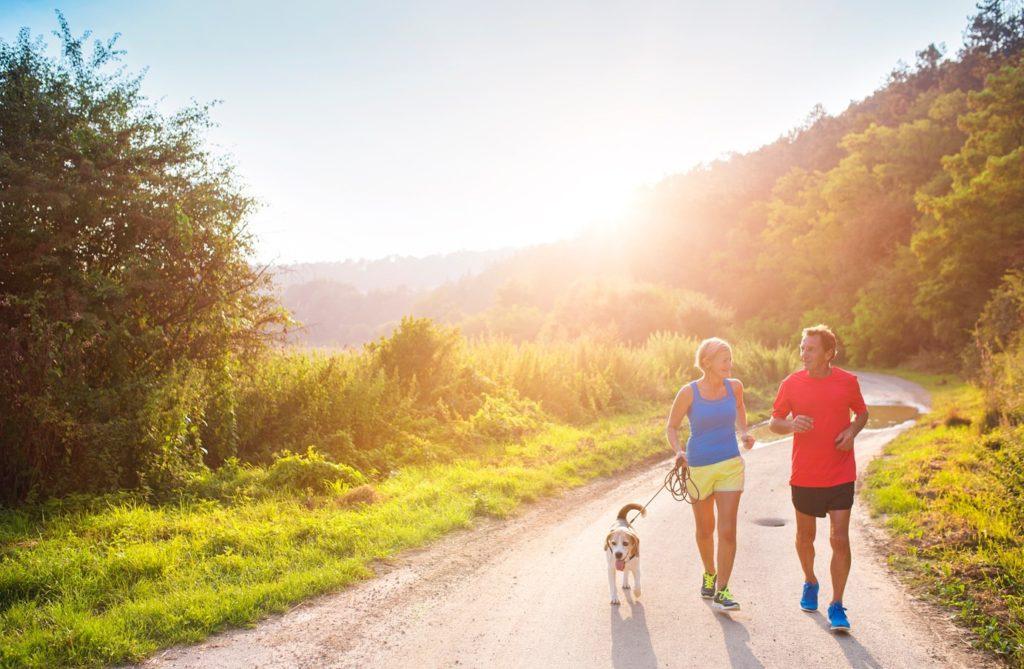 Futás a kedvenceddel? 10 tipp, amit érdemes megfogadni, ha kutyás edzésre indulnál - Arnica RUN