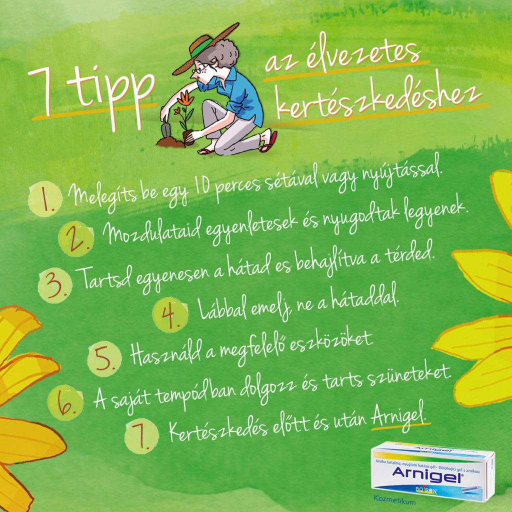 7 tipp az élvezetes kertészkedéshez - Arnica RUN